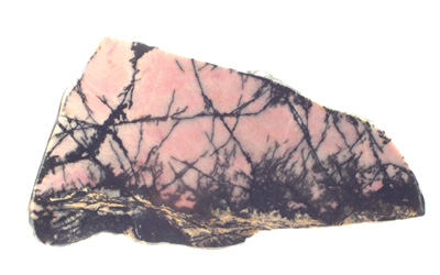 Rhodonite (section polie)